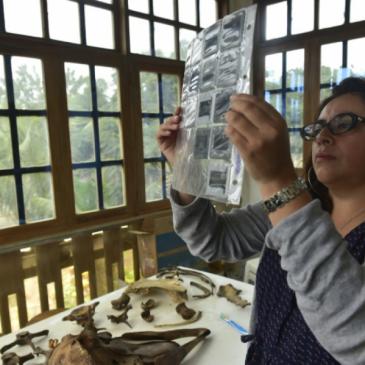 Cristina Castro bióloga ecuatoriana enamorada del mar y de las ballenas
