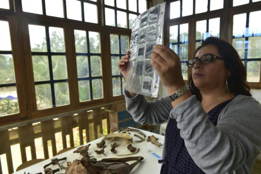 Cristina Castro: bióloga ecuatoriana enamorada del mar y de las ballenas