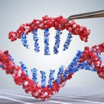 Las personas genéticamente modificadas ya están entre nosotros